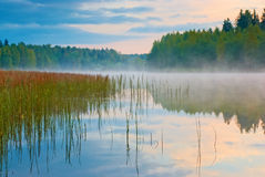 Lake with mist Royalty Free Stock Photo