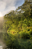 Lake with mist in forest Stock Photography