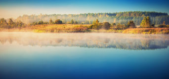 Lake at misty dawn. With blue sky and trees reflected on it Royalty Free Stock Photography