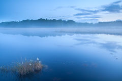 Lake in misty dusk Royalty Free Stock Photo