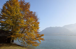 Lake Mondsee Royalty Free Stock Photos