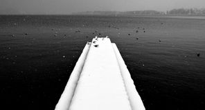 Lake. Mondsee lake in a snowy day Stock Images