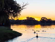Free Lake Monger Sunset Royalty Free Stock Photography - 94653227