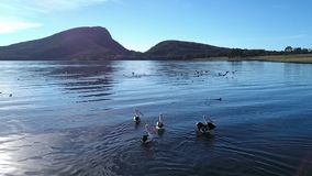 Lake Moogerah in Queensland. Lake Moogerah on the Scenic Rim in Queensland during the day stock video