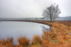Lake on moor Stock Image