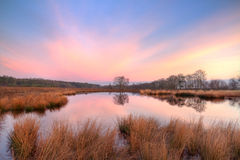 Lake on moor Royalty Free Stock Photography