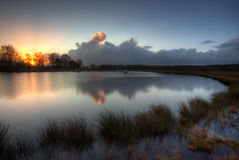 Lake on a moor at sunrise Royalty Free Stock Photos