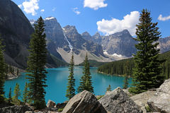 Lake Moraine Evergreens Royalty Free Stock Photo