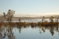 Lake with morning fog Stock Photography