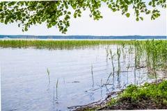 Lake 2. Morning at the lake with good emotions Stock Photos