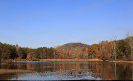 Lake and Mountain in Autumn. The lake at Crowders Mountain State Park with the Canadian geese swimming stock photos
