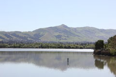 Lake with mountain in the distance. A lake under blue skies with a green mountain in the background Stock Photos