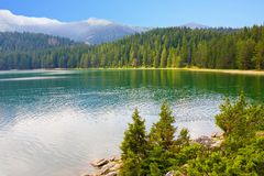 Lake, mountain and forest views from the shore royalty free stock image