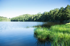 Lake in mountain with green field and blue sky Stock Images