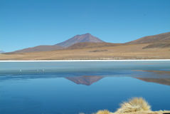 A lake Royalty Free Stock Image