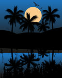 Lake And A Mountain At Night Time. Vector illustration of a lake mountains and coconut palm trees at night time with full moon Stock Images