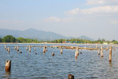 Lake and mountain. This is lake and mountain.this place is in east of thailand Stock Photography