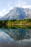 Lake and mountain reflections. Autumn view of lake and mountain reflections in wedge pond, kananaskis country, alberta, canada Stock Image