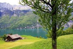 Lake in the mountain in Switzerland. Stock Photos