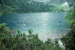 Lake in the mountains. Mountain lake with trees around in Poland Royalty Free Stock Image