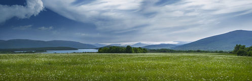 Lake in the mountains. View of the mountains and lake chamomile field Royalty Free Stock Images