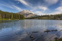 Lake with Mountains and Boreal Forest in Background - Alberta, C Royalty Free Stock Photo
