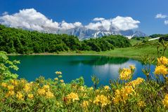 Lake in the mountains with flowers in the foreground. Lake Huko, Caucasus royalty free stock photo