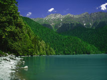 Lake with mountains and forest. Background Royalty Free Stock Photos
