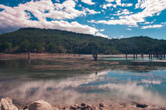 The lake Royalty Free Stock Images