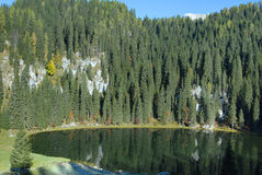 Lake in mountains surrunded with pine trees Stock Photography