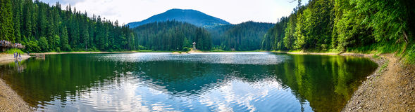 Lake in mountains. And trees stock image
