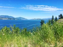 Lake and mountains view from grassy hilltop. Lake and mountains landscape view from hilltop with tall green grass in foreground on a sunny day Royalty Free Stock Photo