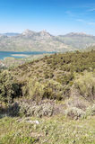 Lake in the mountains of Zahara. De la sierra with some trees olive trees llocated in the Spanish province of Cadiz, it´s a vertical picture Stock Image