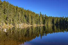 The lake Mummelsee in Seebach Stock Photography