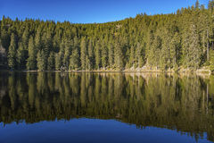 The lake Mummelsee in Seebach Stock Photo