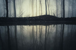 Lake in mysterious dark forest with fog Stock Images