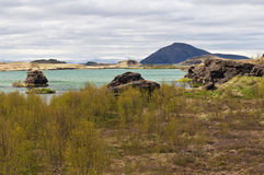 Lake Myvatn. Iceland Royalty Free Stock Photography