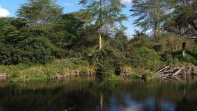 Lake at Mzima springs, Tsavo West Park in Kenya,