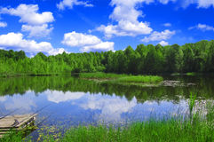 Lake nad forest. View of the lake near the forest in summer Stock Photo