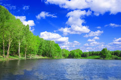Lake nad forest conceptual image. View of the lake near the forest in summer Stock Photos