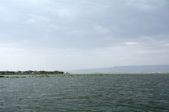Lake Naivasha, Kenya. Scenery of Lake Naivasha in Kenya Royalty Free Stock Image