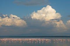 Lake Nakuru. Famous alkaline lake in rift valley of Kenya, home to millions of lesser flamingos Stock Image