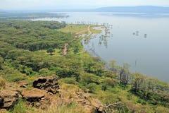 Lake Nakuru - Kenya Stock Photography