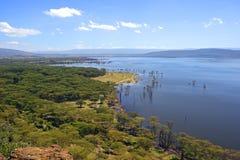 Lake Nakuru Royalty Free Stock Image
