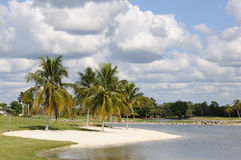 Lake in Naples, Florida Stock Images