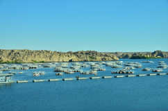 Lake Nasser Stock Image