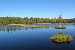 Lake in national park Bohemian Forest Stock Images