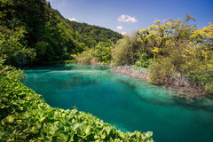 Lake in national park Plitvice Lakes Stock Image