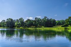 Lake in a natural park with trees growing on the banks Royalty Free Stock Images