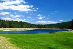 Lake in nature. Mountain lake and forest with blue water Royalty Free Stock Photos